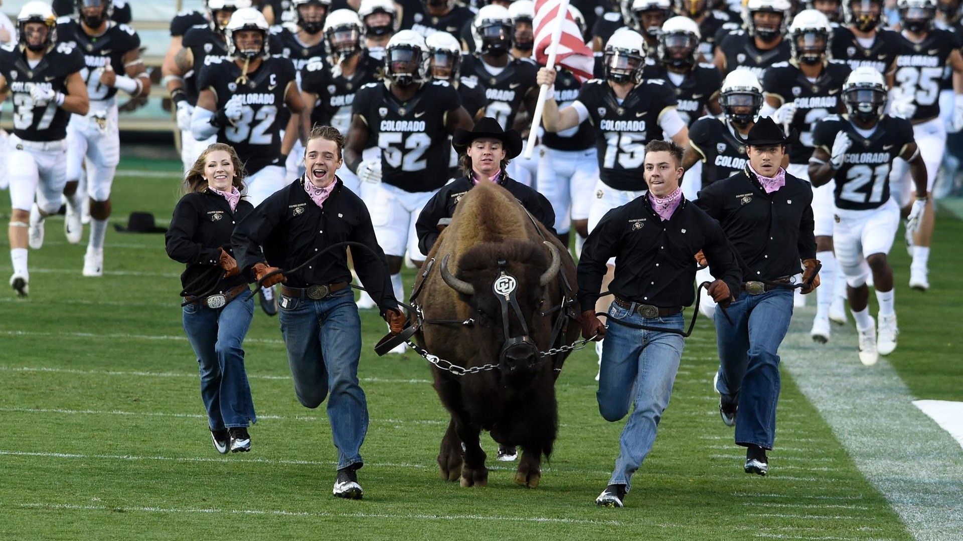 ralphie handler roster set university of colorado athletics