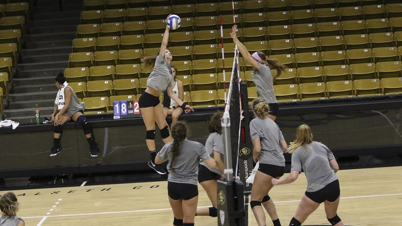 Buffs New Hitters Progressing Positively